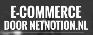 Interview met Netnotion oprichter Hubert Moorren